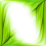 Green grass frame background Stock Photo