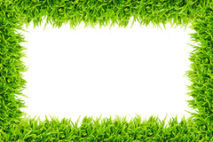 Green grass frame isolated. On white background vector illustration