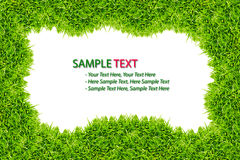 Green Grass frame isolated. On white background royalty free stock photography