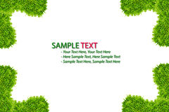 Green grass frame isolated. On white background royalty free illustration