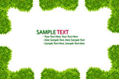 Green grass frame isolated. On white background stock illustration