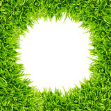Green grass frame isolated Royalty Free Stock Image