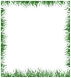 Green grass frame isolated on a white background Stock Photography