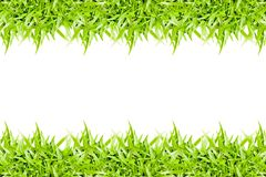 green grass frame isolated on white background Royalty Free Stock Photo