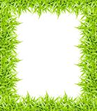 green grass frame isolated on white background Royalty Free Stock Photos