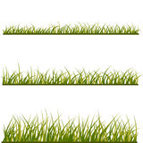 Green grass. With frame isolated on white. Floral eco nature backgro Stock Photo