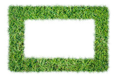 Green grass frame Stock Photography