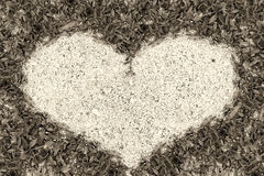 Green grass frame sand in heart shape Royalty Free Stock Images