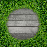 Green grass frame and vintage wood background. Stock Photography