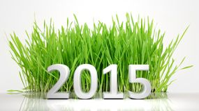 2015 of green grass Royalty Free Stock Images