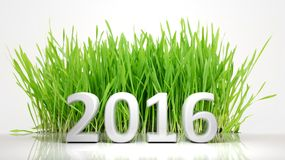 2016 of green grass. 2016 in front of green grass Royalty Free Stock Images