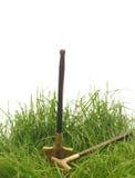 Green grass with garden tools Stock Photos