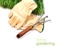 Green grass, gloves, and garden tool Royalty Free Stock Photos