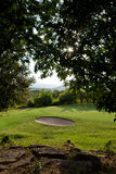 Green Grass and Golf Course Stock Images