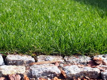 Green grass and granite paving closeup Royalty Free Stock Photos