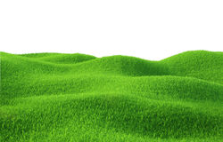 Green grass growing on hills with white background. Top view. 3d render Royalty Free Stock Photo