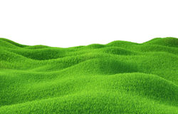 Green grass growing on hills with white background. Top view. 3d render Stock Photo