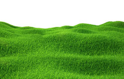 Green grass growing on hills with white background. Top view. 3d render Stock Photography