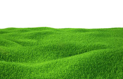 Green grass growing on hills with white background Stock Photography