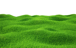 Green grass growing on hills with white background. Top view. 3d render Royalty Free Stock Images