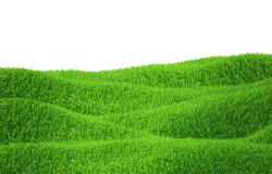 Green grass growing on hills with white background. Top view. 3d render Royalty Free Stock Photography