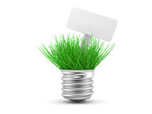 Green grass growing up through light Stock Images
