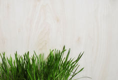 Green grass grows near the wooden planks. Stock Photo