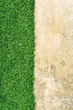 Green grass grunge cement  Stock Images