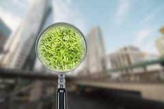 Green grass in grunge magnifier on blurred city background. Enviroment care concept Stock Image