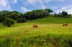 Green Grass Hill and hay bales. Green grass, hay bales on the slopes of the hills against a blue cloudy sky Stock Image