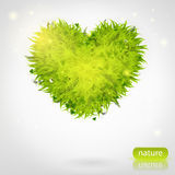 Green grass heart Stock Images