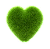 Green grass heart Stock Image