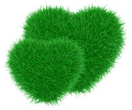 Green grass heart shape. Royalty Free Stock Image