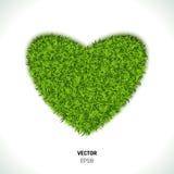 Green Grass Heart Stock Photography