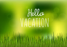 Green grass hello vacation Royalty Free Stock Photo