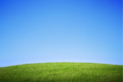 Green grass hill Stock Photography