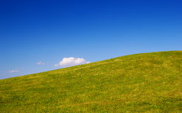 Green grass hill background. Stock Photography