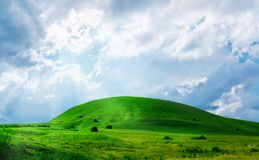 Green grass hill Royalty Free Stock Photography