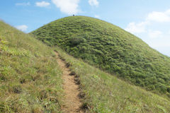 Green Grass Hill Royalty Free Stock Photo
