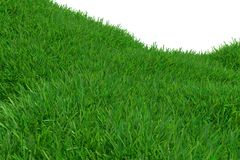 Green grass hill isolated on white background. Natural background. Outdoor abstract background. 3d rendering. Green grass hill isolated on white background Royalty Free Stock Image