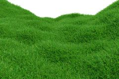 Green grass hill isolated on white background. Natural background. Outdoor abstract background. 3d rendering. Green grass hill isolated on white background Royalty Free Stock Photos