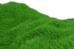 Green grass hill isolated on white background. Natural background. Outdoor abstract background. 3d rendering. Green grass hill isolated on white background vector illustration