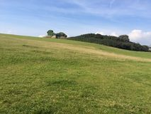 Green grass hill on a summers day. Lovely summers day on a grassy hill with trees in the background Royalty Free Stock Photos