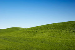Green grass hills Royalty Free Stock Photos