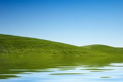 Green grass hills stock images