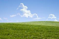 Green grass hills Stock Photos