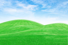 Green grass hills with sky Stock Photos