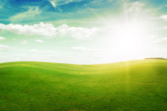 Green grass hills under midday sun in blue sky. Royalty Free Stock Photography