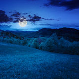 Green grass on hillside meadow in mountain at nigh. Summer landscape. green grass on  hillside meadow. forest in fog on the mountain at night in  full moon light Stock Image