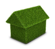 Green grass home Royalty Free Stock Images